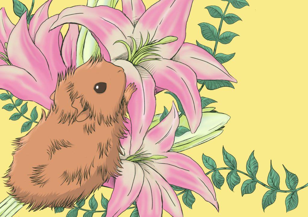 モルモットと百合の花